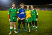 Hector goes GAA - Playing rounders in Semple Stadium in Thurles